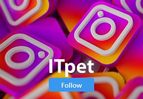 itpet-instagram
